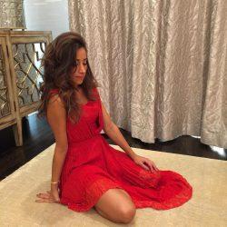 sexy celebrityDanielle Jonas in red dress